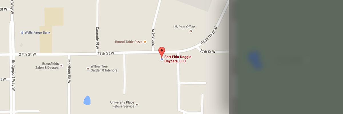 Map of Fort Fido Dog Daycare